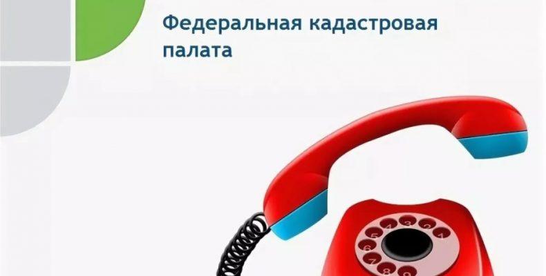 Горячая телефонная линия в кадастровой палате